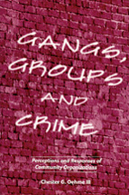 Gangs, Groups and Crime book jacket