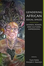 Gendering African Social Spaces book jacket